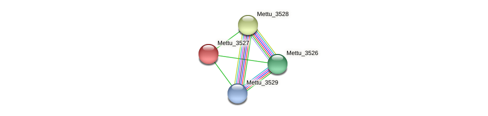 Mettu_3527 protein (Methylobacter tundripaludum) - STRING interaction network