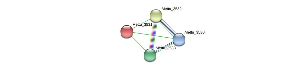 Mettu_3531 protein (Methylobacter tundripaludum) - STRING interaction network