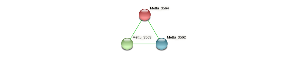 Mettu_3564 protein (Methylobacter tundripaludum) - STRING interaction network