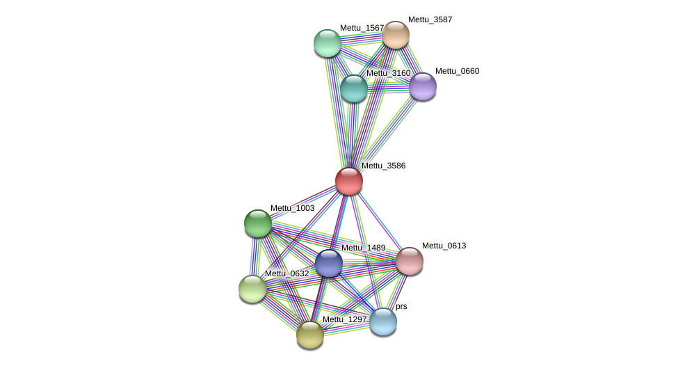 Mettu_3586 protein (Methylobacter tundripaludum) - STRING interaction network