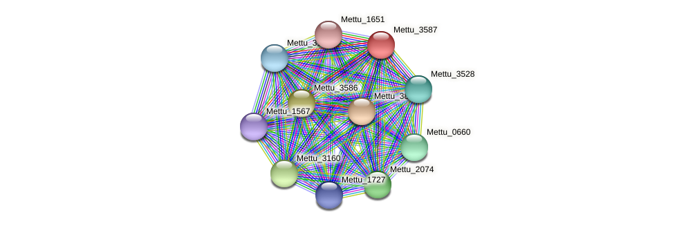 Mettu_3587 protein (Methylobacter tundripaludum) - STRING interaction network