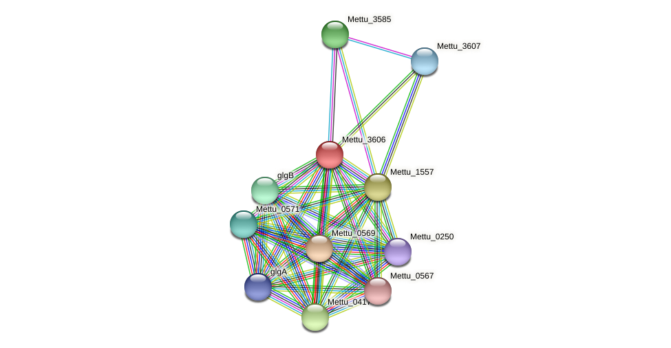 Mettu_3606 protein (Methylobacter tundripaludum) - STRING interaction network