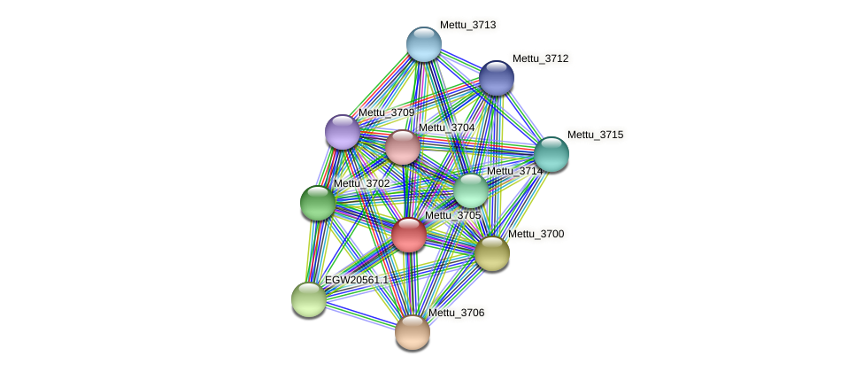 Mettu_3705 protein (Methylobacter tundripaludum) - STRING interaction network