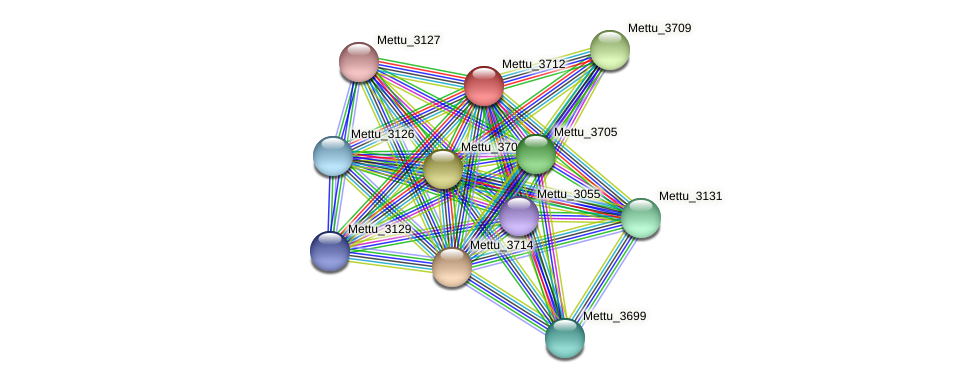 Mettu_3712 protein (Methylobacter tundripaludum) - STRING interaction network