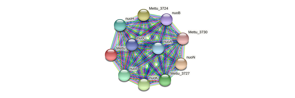 Mettu_3723 protein (Methylobacter tundripaludum) - STRING interaction network