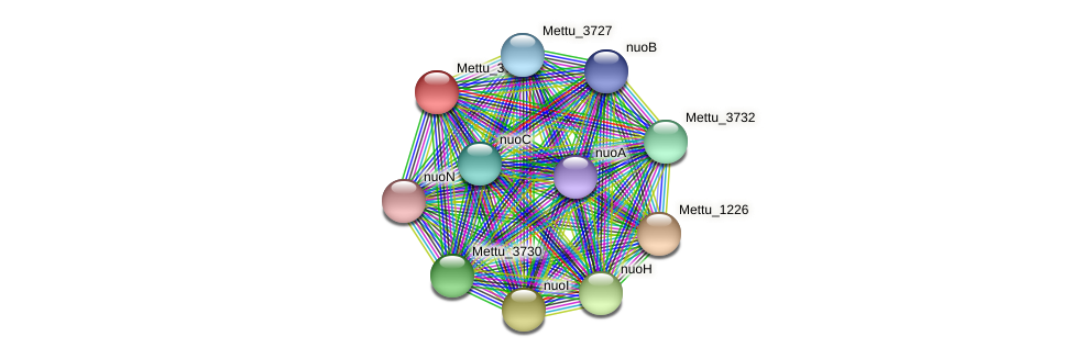 Mettu_3731 protein (Methylobacter tundripaludum) - STRING interaction network