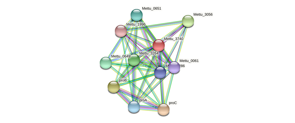 Mettu_3740 protein (Methylobacter tundripaludum) - STRING interaction network