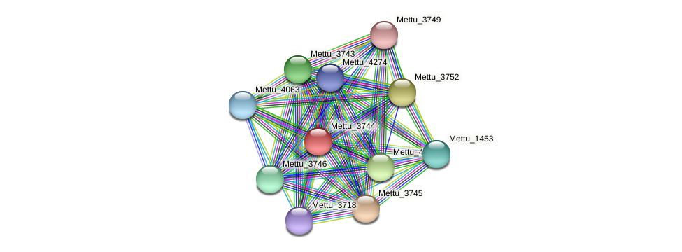 Mettu_3744 protein (Methylobacter tundripaludum) - STRING interaction network