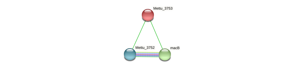Mettu_3753 protein (Methylobacter tundripaludum) - STRING interaction network