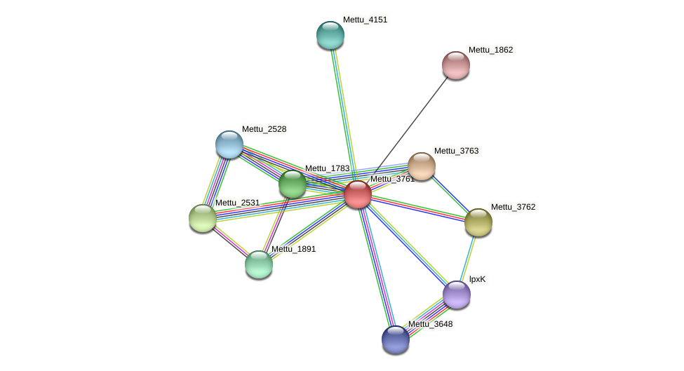 Mettu_3761 protein (Methylobacter tundripaludum) - STRING interaction network