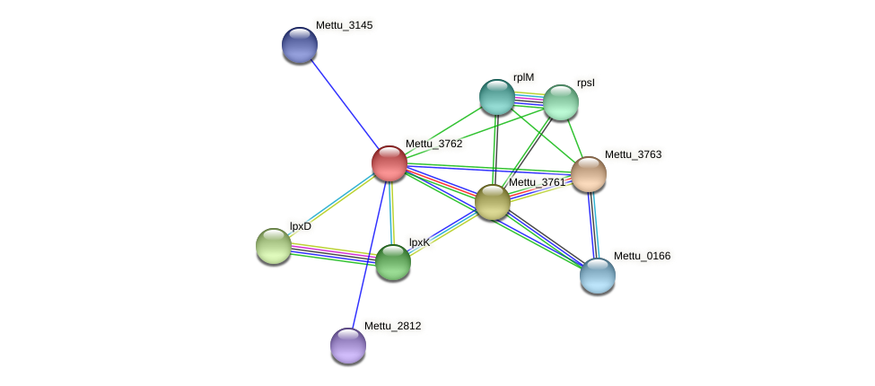 Mettu_3762 protein (Methylobacter tundripaludum) - STRING interaction network