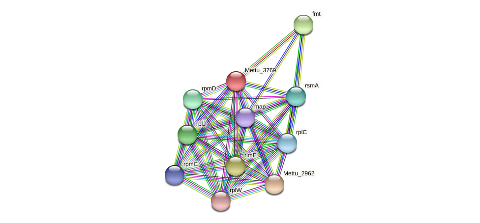 Mettu_3769 protein (Methylobacter tundripaludum) - STRING interaction network