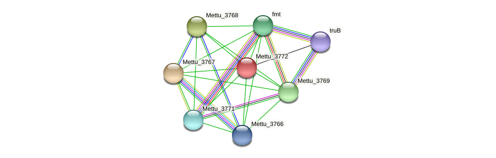 Mettu_3772 protein (Methylobacter tundripaludum) - STRING interaction network