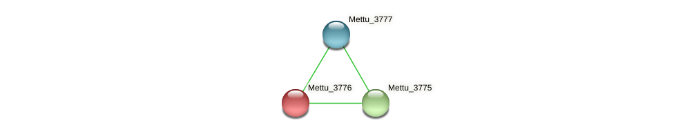 Mettu_3776 protein (Methylobacter tundripaludum) - STRING interaction network