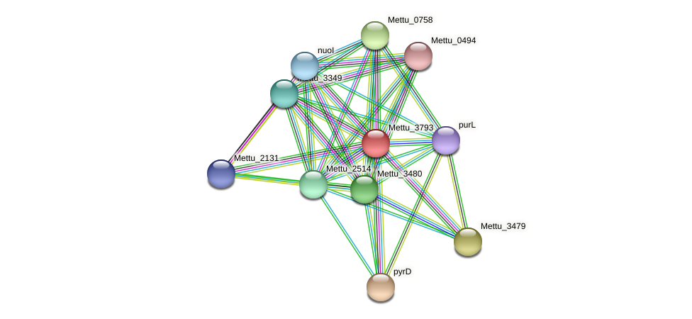 Mettu_3793 protein (Methylobacter tundripaludum) - STRING interaction network