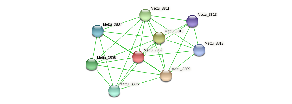 Mettu_3808 protein (Methylobacter tundripaludum) - STRING interaction network