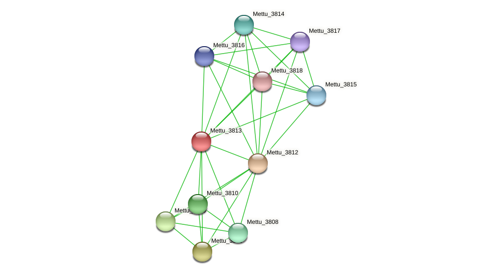 Mettu_3813 protein (Methylobacter tundripaludum) - STRING interaction network