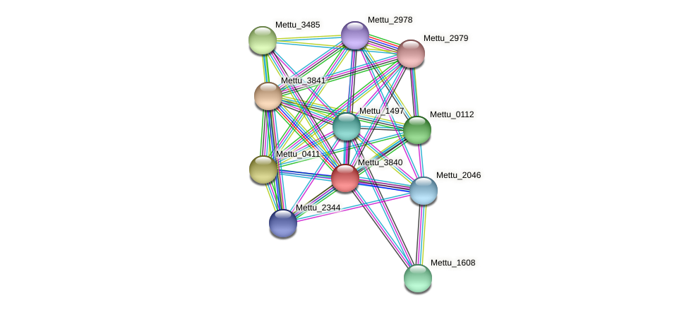 Mettu_3840 protein (Methylobacter tundripaludum) - STRING interaction network