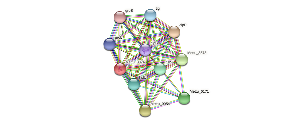 Mettu_3874 protein (Methylobacter tundripaludum) - STRING interaction network