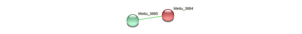 Mettu_3884 protein (Methylobacter tundripaludum) - STRING interaction network