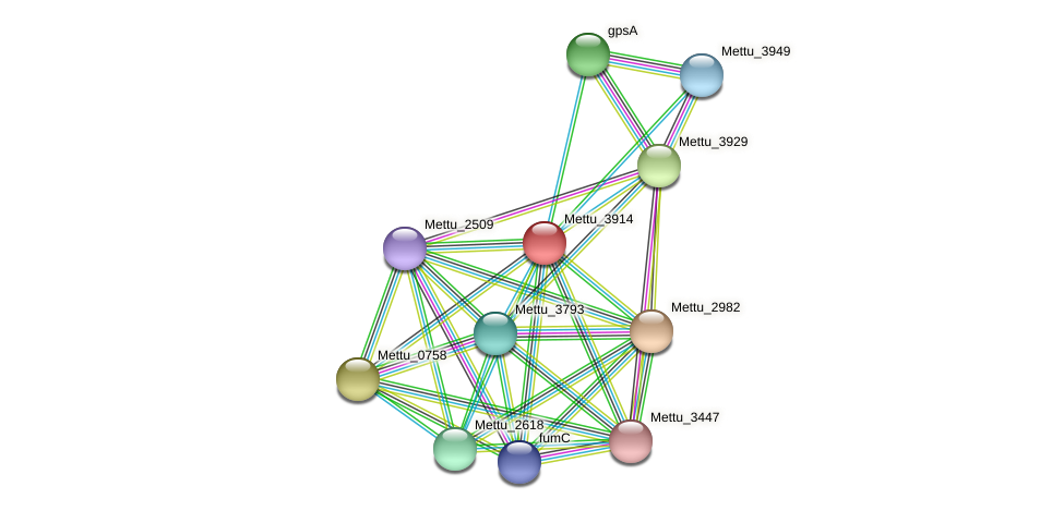Mettu_3914 protein (Methylobacter tundripaludum) - STRING interaction network