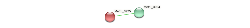 Mettu_3925 protein (Methylobacter tundripaludum) - STRING interaction network