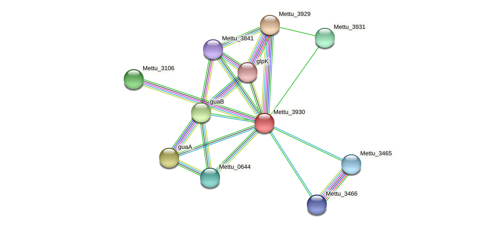 Mettu_3930 protein (Methylobacter tundripaludum) - STRING interaction network
