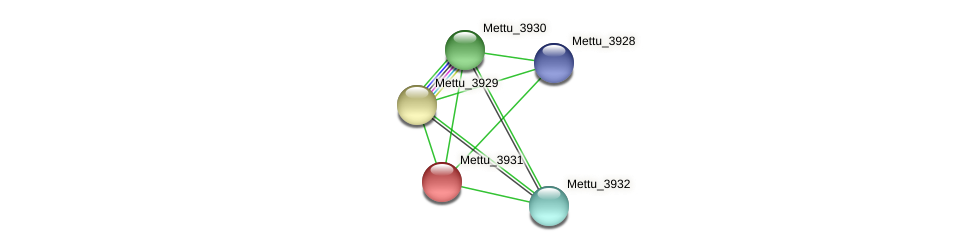 Mettu_3931 protein (Methylobacter tundripaludum) - STRING interaction network