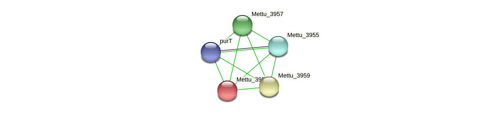 Mettu_3958 protein (Methylobacter tundripaludum) - STRING interaction network