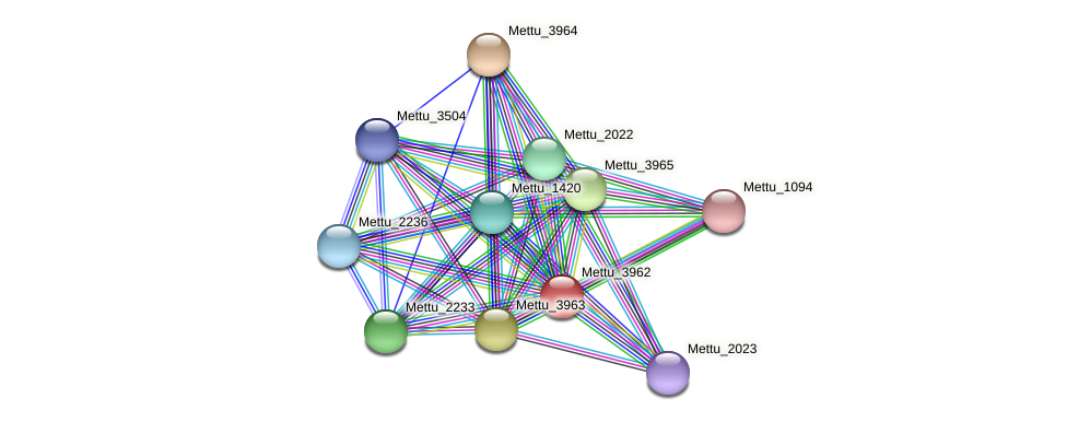 Mettu_3962 protein (Methylobacter tundripaludum) - STRING interaction network