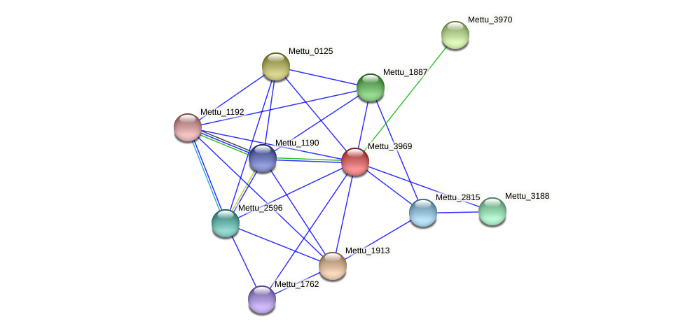 Mettu_3969 protein (Methylobacter tundripaludum) - STRING interaction network