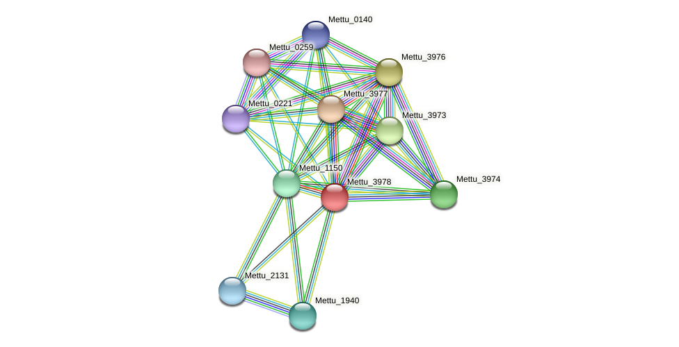 Mettu_3978 protein (Methylobacter tundripaludum) - STRING interaction network