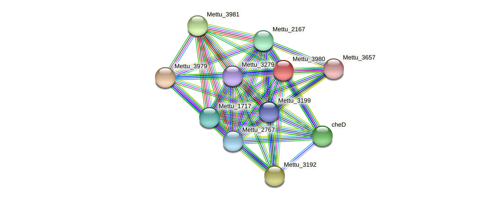 Mettu_3980 protein (Methylobacter tundripaludum) - STRING interaction network