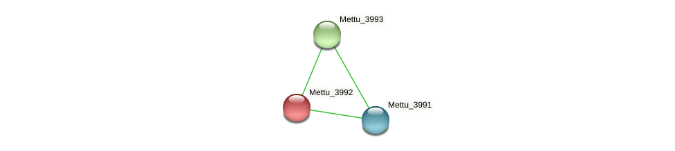 Mettu_3992 protein (Methylobacter tundripaludum) - STRING interaction network