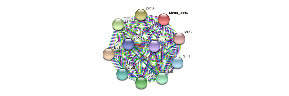Mettu_3996 protein (Methylobacter tundripaludum) - STRING interaction network