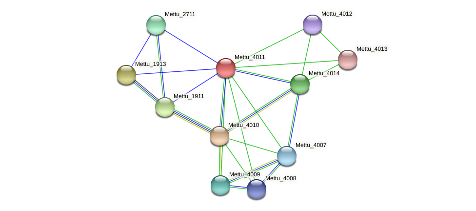 Mettu_4011 protein (Methylobacter tundripaludum) - STRING interaction network