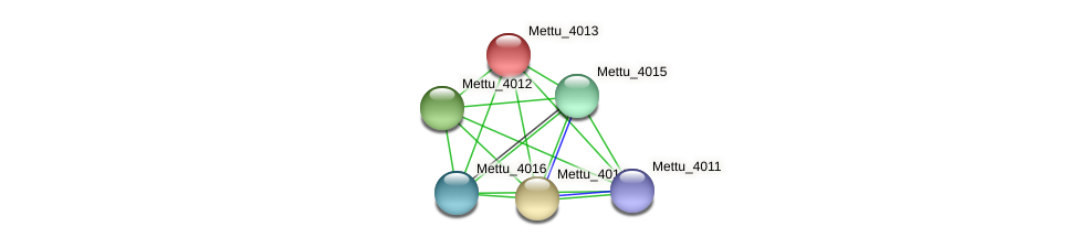Mettu_4013 protein (Methylobacter tundripaludum) - STRING interaction network