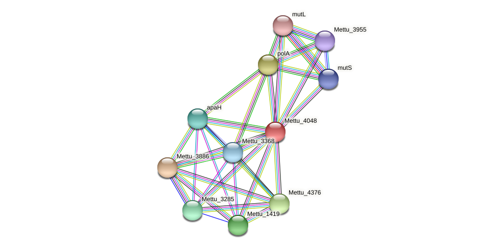 Mettu_4048 protein (Methylobacter tundripaludum) - STRING interaction network