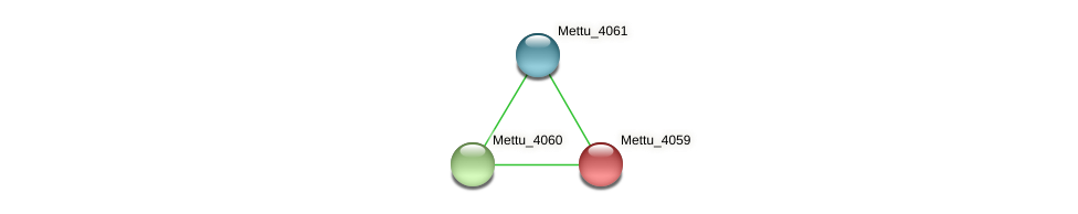 Mettu_4059 protein (Methylobacter tundripaludum) - STRING interaction network