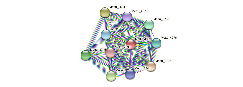 Mettu_4063 protein (Methylobacter tundripaludum) - STRING interaction network