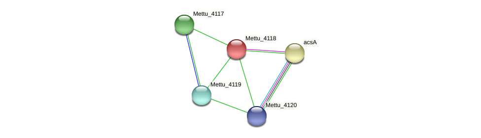 Mettu_4118 protein (Methylobacter tundripaludum) - STRING interaction network