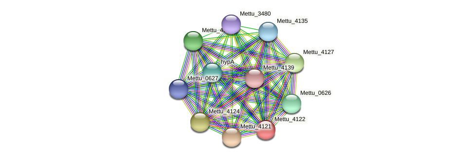 Mettu_4122 protein (Methylobacter tundripaludum) - STRING interaction network