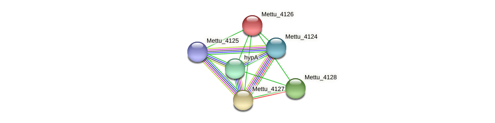 Mettu_4126 protein (Methylobacter tundripaludum) - STRING interaction network