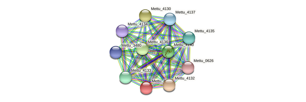 Mettu_4131 protein (Methylobacter tundripaludum) - STRING interaction network