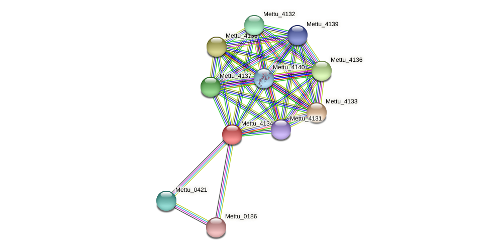 Mettu_4134 protein (Methylobacter tundripaludum) - STRING interaction network