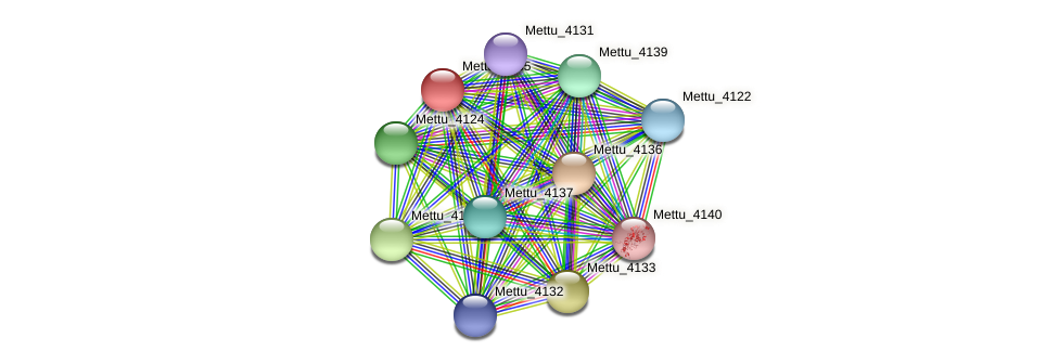 Mettu_4135 protein (Methylobacter tundripaludum) - STRING interaction network