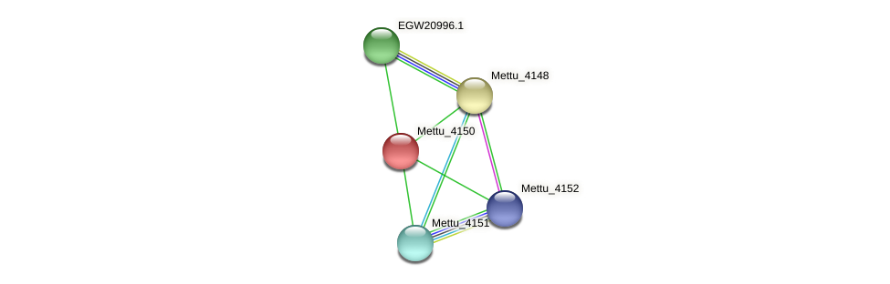 Mettu_4150 protein (Methylobacter tundripaludum) - STRING interaction network