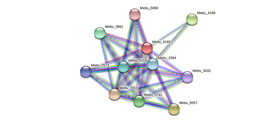 Mettu_4169 protein (Methylobacter tundripaludum) - STRING interaction network