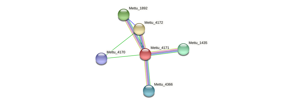 Mettu_4171 protein (Methylobacter tundripaludum) - STRING interaction network