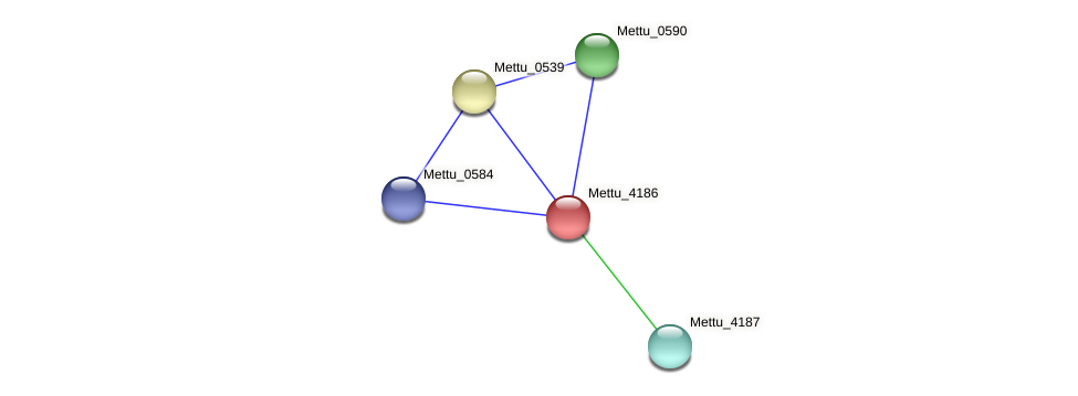 Mettu_4186 protein (Methylobacter tundripaludum) - STRING interaction network